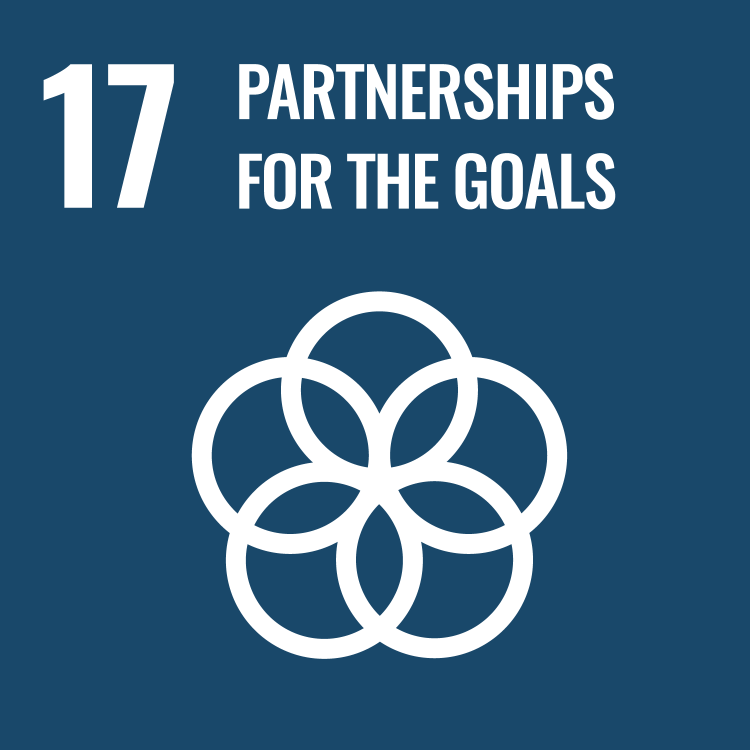 17. PARTNERSHIPS FOR THE GOALS